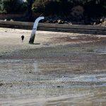 Am Strand von Carantec bei Ebbe. @ Klaus W. Schmidt