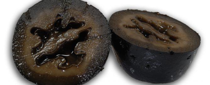 sechs Monate alte schwarze Walnüsse