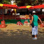 Verkaufsstände mit Zwiebeln sind selten