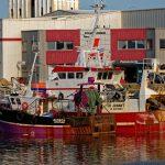 Der Hafen ist relativ groß, beherbergt mittlerweile jedoch nur wenige Fischtrawler