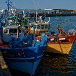 Fischtrawler im Päckchen festgemacht
