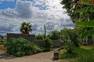 Der Garten mit seiner mediterranen Vegetation