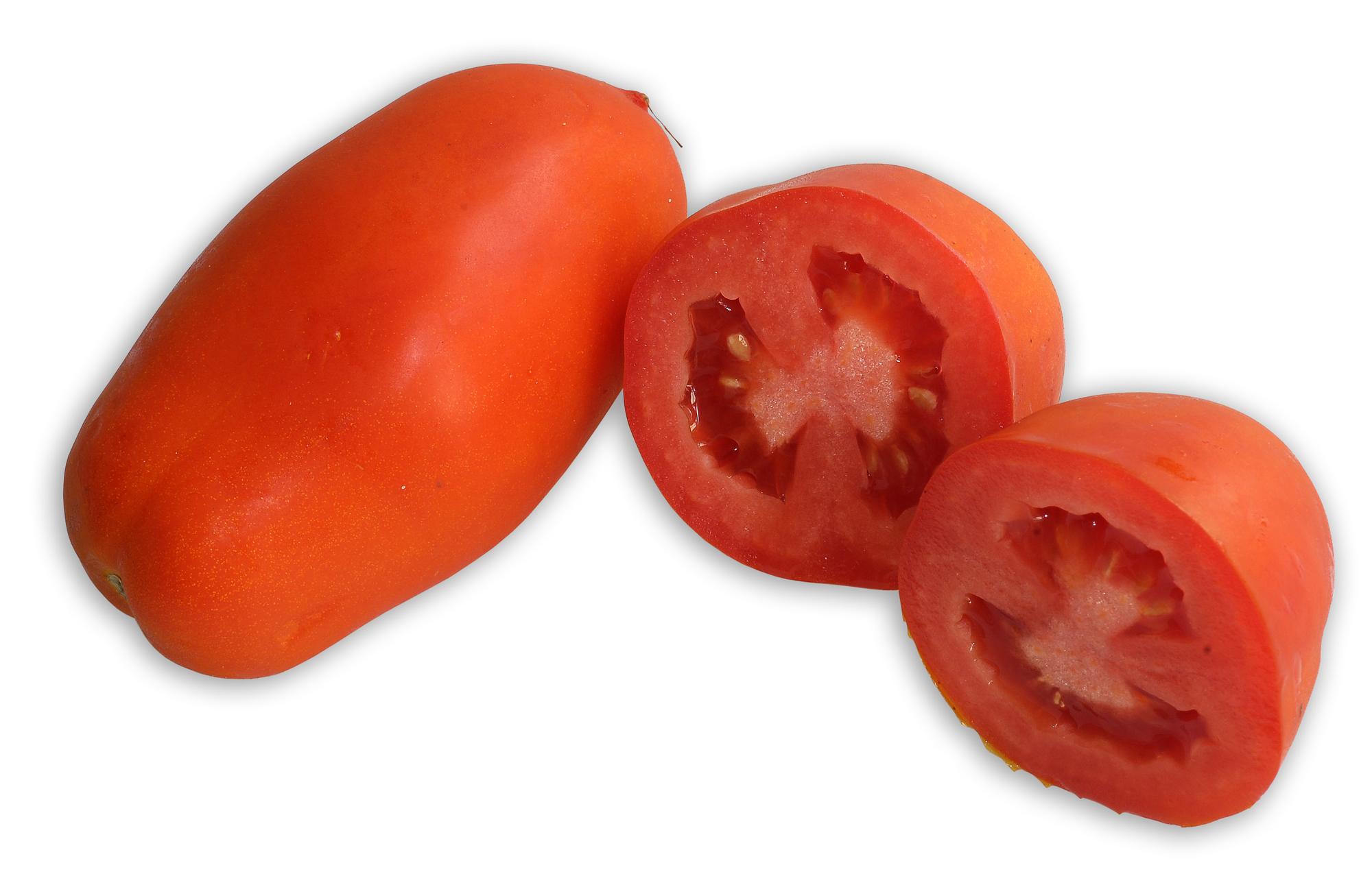 San-Marzano-Tomate, auch Flaschentomate genannt, eine Sorte aus der großen Familie der Tomate