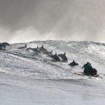 Für diese Aufnahmen von Großen Tümmlern musste das Team wochenlang auf die optimalen Wellen und Delfingruppen warten. Bild: WDR/BBC